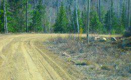 terrain-non-riverain-lac-taureau