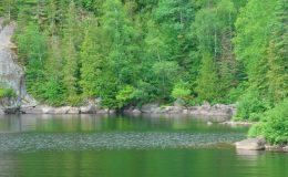 terrain-riverain-lac-taureau-saint-michel-des-saints